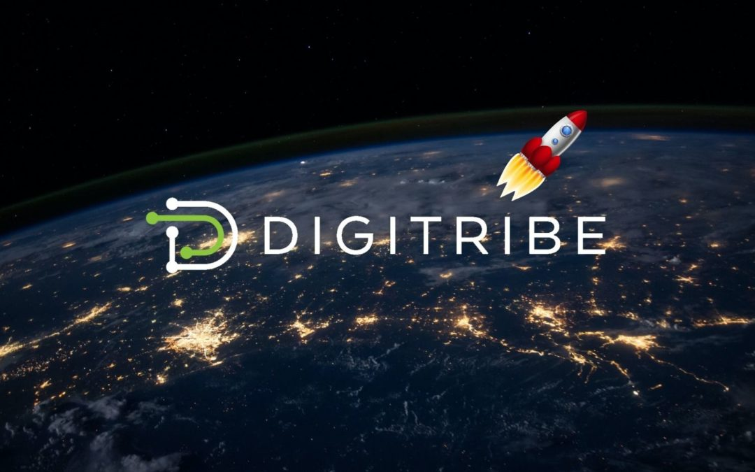 New management and new perspectives for Brussels-based scale-up DigiTribe